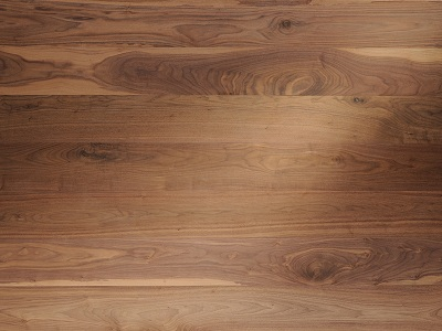 دولت مجوز واردات چوب از آمریکا را صادر کرد